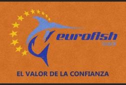 ALFOMBRAS DE ENTRADA - EL VALOR